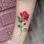 Tatuajes de rosas para mujer